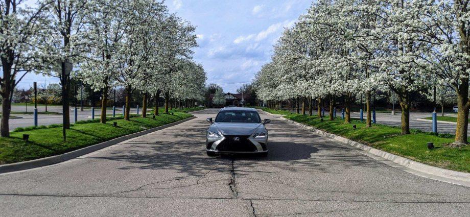 2020 Lexus ES 350 F